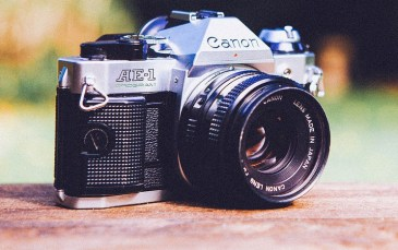 Photography and its Relation with Other Art Forms